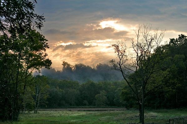 Creation's Dawn