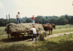 Making Hay - Circa 1983