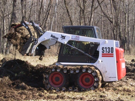 The Bobcat (Photo Taken March 2005)